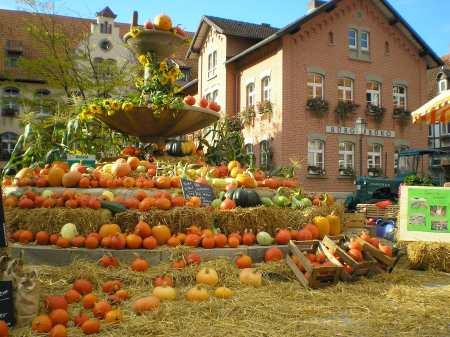 Bauernmarkt in Südniedersachsen