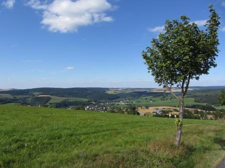 Extensives Grünland auf dem Schwarzenberg im Erzgebirge (789m)