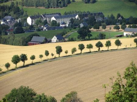 Baumreihe als Flächennutzung im Umweltinteresse