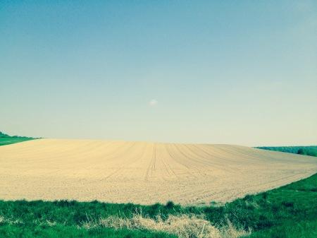 Ergebnis der Direktzahlungen - Ausgeräumte Landschaft