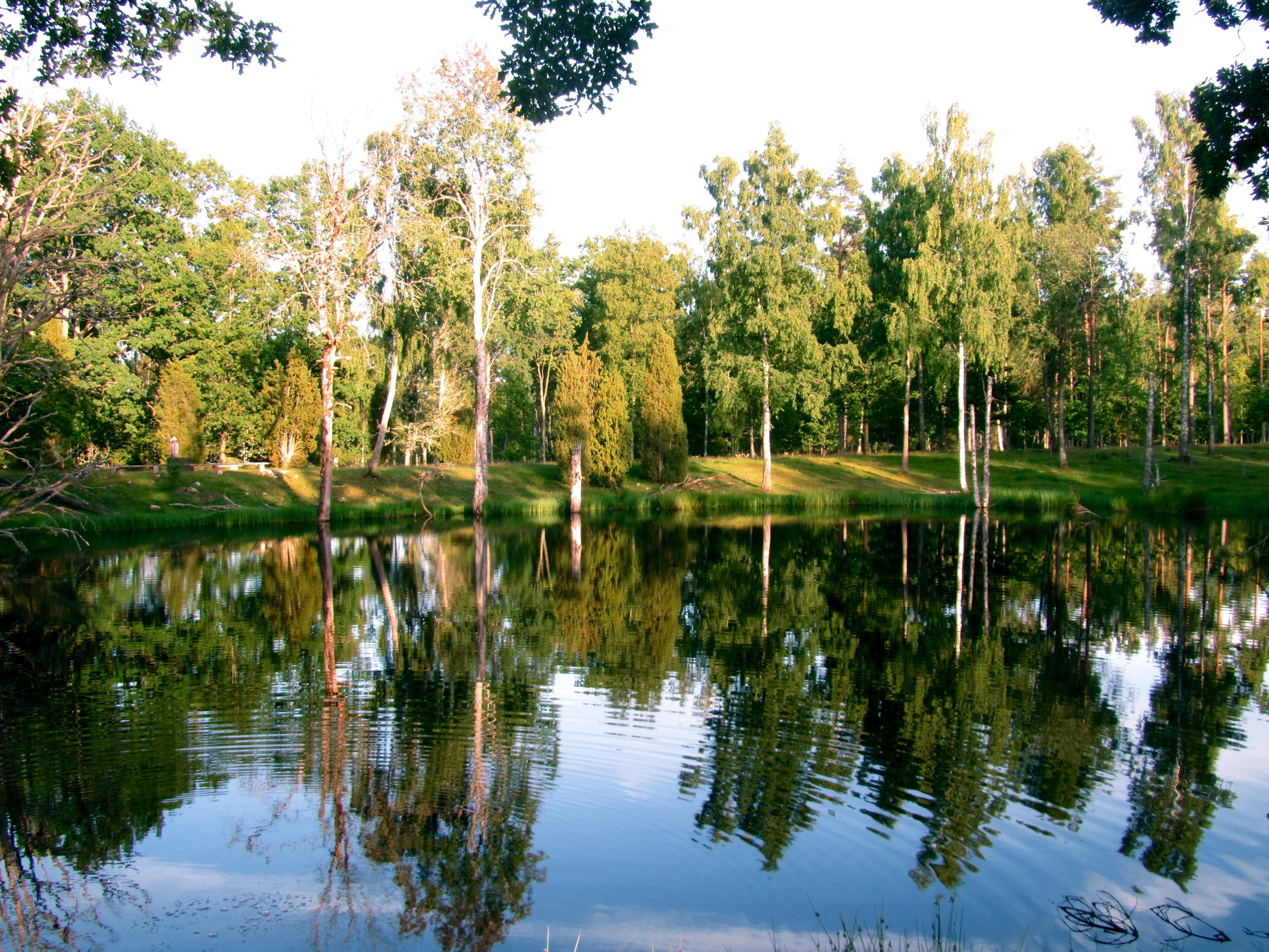 Naturschutzgebiet Korrö, Småland, Schweden