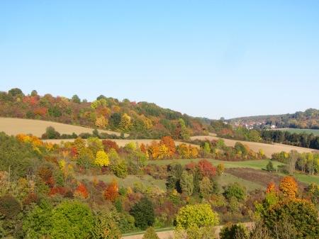 Landschaftselemente_Herbst2015