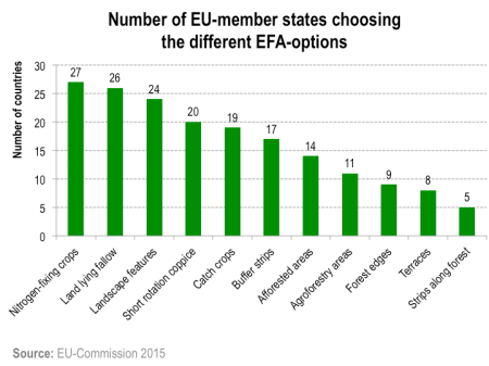 Figure 1: Number of EU-member states offering the different EFA-options