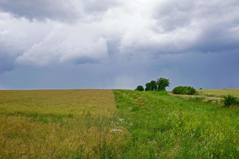 Pufferstreifen im Landkreis Göttingen