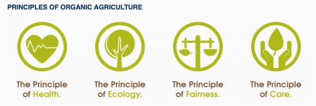 IFOAM Prinzipien.png